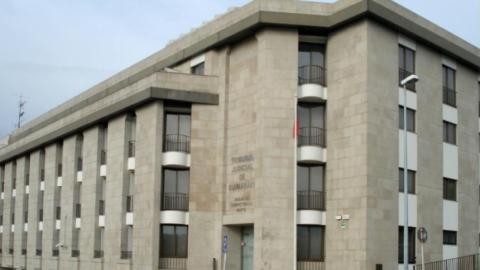 CÂMARA QUERIA FRANCISCA ABREU COMO VOGAL EXECUTIVA DA FCG