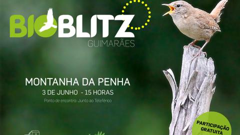 BIOBLITZ GUIMARÃES