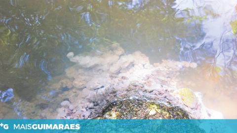 DESCARGAS DE POLUENTES EM AFLUENTES DO RIO AVE