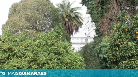 ASSOCIAÇÃO MURALHA CONTRA A CONSTRUÇÃO DO PARQUE DE CAMÕES