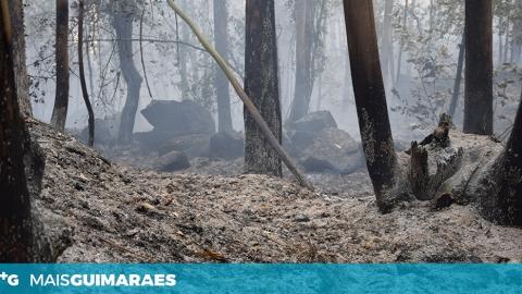 MANHÃ DE SEGUNDA-FEIRA SEM INCÊNDIOS EM GUIMARÃES