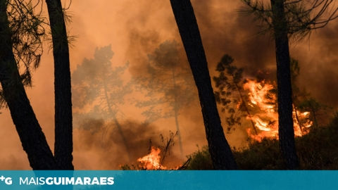 SÁBADO DE MUITO TRABALHO PARA OS BOMBEIROS EM GUIMARÃES