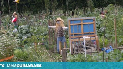 RESULTADOS DO CONCURSO DE ESPANTALHOS DA HORTA PEDAGÓGICA REVELADOS NO PIQUENICÃO