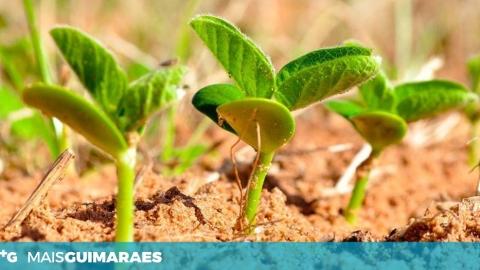 APRESENTAÇÃO DE INSTRUMENTOS DE APOIO NO ÂMBITO DA ELABORAÇÃO DO PLANO DE NEGÓCIOS