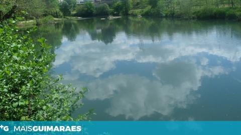 CERCA DE 500 PEIXES RETIRADOS MORTOS DO RIO AVE