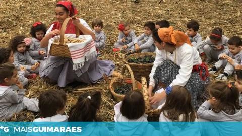 SÁBADO É 'DIA DO PÃO' NA FESTA DAS COLHEITAS DE S. TORCATO