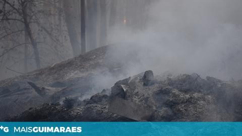 HOMEM DE 57 ANOS DETIDO POR INCÊNDIO FLORESTAL