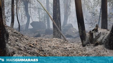 DECLARAÇÃO DE SITUAÇÃO DE ALERTA DEVIDO A RISCO DE INCÊNDIOS