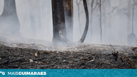 INCÊNDIO EM LONGOS DURANTE A MADRUGADA