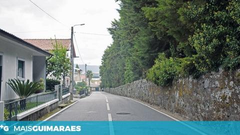 VESPAS ASIÁTICAS OBRIGAM A FECHAR JANELAS EM PONTE