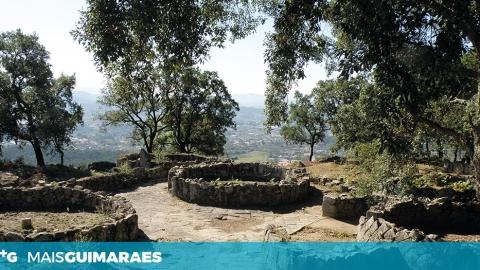 CITÂNIA DE BRITEIROS CELEBRA DIA DA FLORESTA AUTÓCTONE