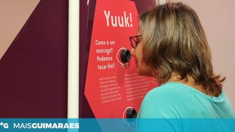 """""""MORCEGOS ÀS CLARAS"""", UMA EXPOSIÇÃO PARA MOSTRAR A IMPORTÂNCIA DOS PEQUENOS MAMÍFEROS VOADORES"""