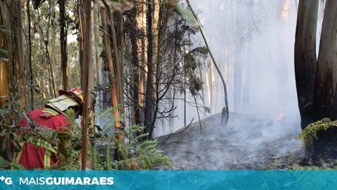 SETE FREGUESIAS VIMARANENSES COM RISCO ELEVADO DE INCÊNDIO FLORESTAL