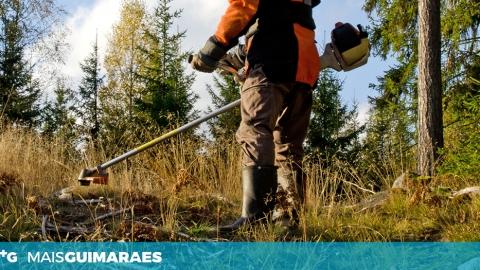 Chega ao fim o prazo para limpar terrenos. GNR começa fiscalização esta sexta-feira