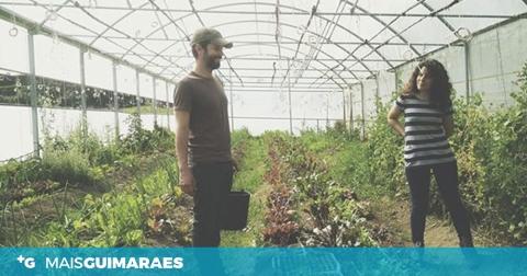 A agricultura biológica está em crescimento (mesmo durante a pandemia)